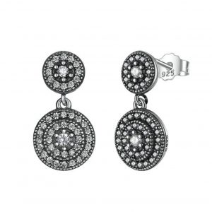 Radiant Elegance Silver Drop Earrings