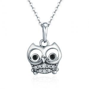 Wise-Owl-Necklace-Silver-Jewellery online jewellery shop - Wise Owl Necklace Silver Jewellery 300x300 - Meaningful Necklace For Her