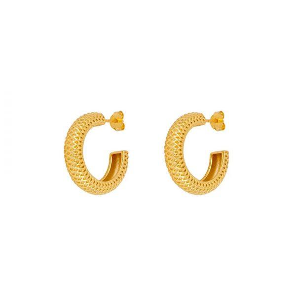 gold-earrings-hoops